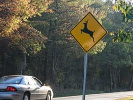 Road Symbol Sign